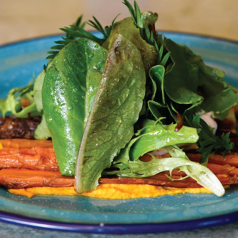Heirloom Carrot Salad
